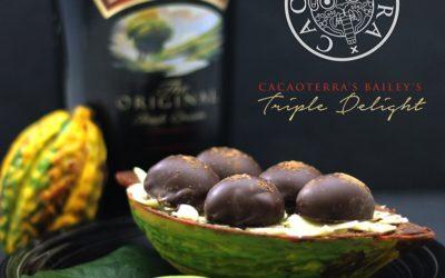 Cacaoterra's Baileys Triple Delight